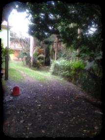 jardincielo8